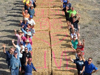 Support sought for hay delivery effort in NSW