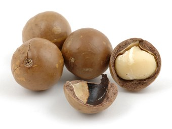 Macadamia processor takes crack at Qld market