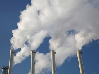 Large firms to thrive under carbon tax