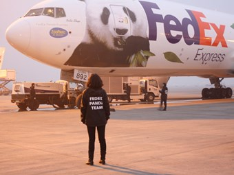 FedEx overseas safe arrival of VIPs