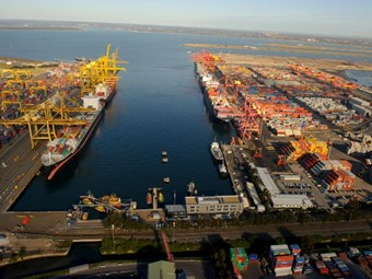 Shipping lines streamline operations: report