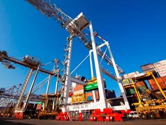 New crane at DP World terminal starts its work