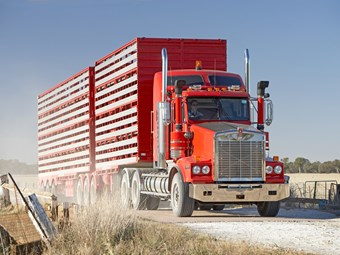 EXCLUSIVE: Kenworth blames credit crunch for slowing market