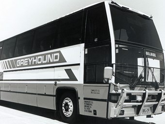 REFLECTION: 90s Greyhound
