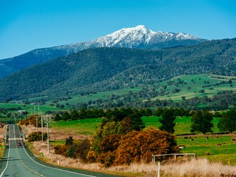 TRAVEL SAFE BUS SERVICE CONFIRMED FOR VICTORIAN ALPS