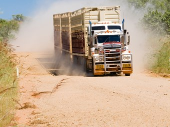 Livestock transporters get new fatigue management option