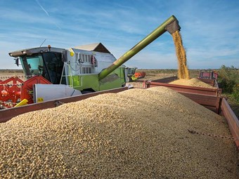 RMS targets harvest haulers and grain receivers