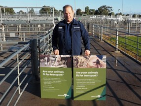 SA livestock transporter pleads guilty to animal cruelty