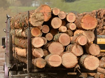 WARTA and forestry sector strike deal on new code of practice