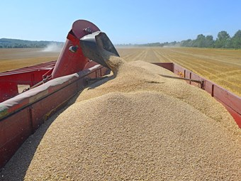High level of compliance for trucking under grain harvest scheme