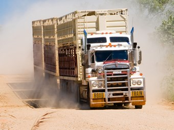 Livestock loading scheme hits roadblock with local governments