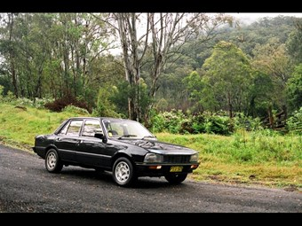 1984 Peugeot 505 STI – today's tempter