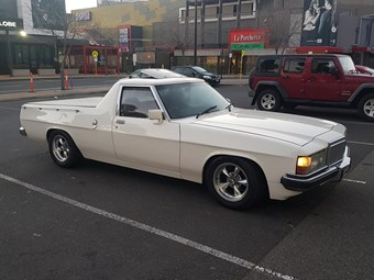 1984 Holden WB Ute – Today's Tempter