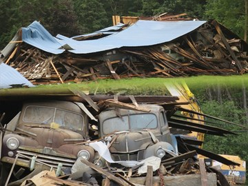 Collapsed barn reveals 36 classic cars – all up for sale