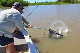 Tight Lines: How to use a landing net