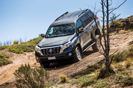 4X4 Of The Year finalists: Toyota Prado GXL
