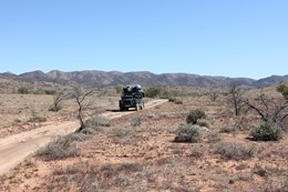 Flinders and Gammon Ranges, SA