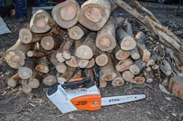 Stihl MSA 160T electric chainsaw