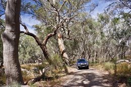 4X4 track Darling River NSW