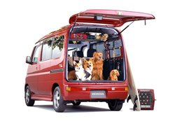 Honda Vamos Hobio Travel Dog