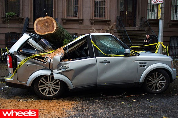 Sandy causes car-nage in New York