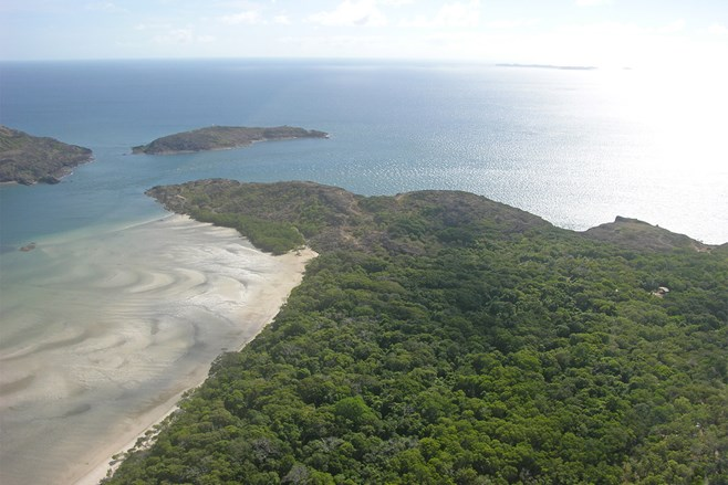 Jardine, Cape York