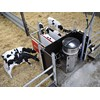 The Lely Calm Control calf feeder provides an easy way to keep your calves fed and healthy.