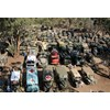 200 military vehicles on display at the Corowa Showgrounds.