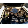 ZC Fairlane engine