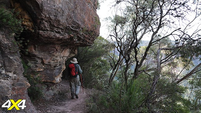 A walker on The Golden Stairs track, Blue Mountains, NSW.