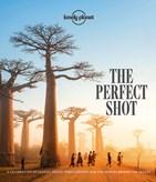 The_Perfect_Shot_1.jpg