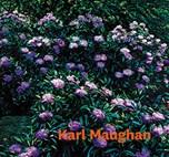 Karl Maughan.jpg