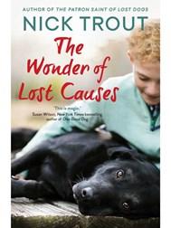 The-Wonder-of-Lost-Causes.jpg