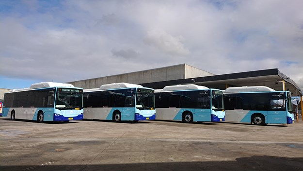 Transit Systems Electric Buses.JPG