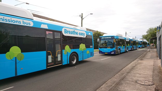 transit systems ebuses.jpg