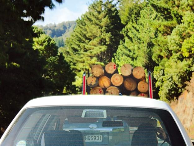 NZTA toughening up its enforcement regime.jpg