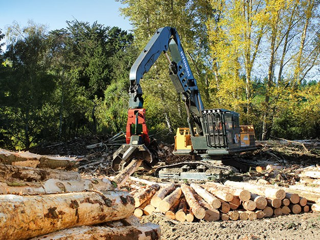 Porter-Equipment-forestry-Hyundai-FX-Series-log-loader-1.jpg
