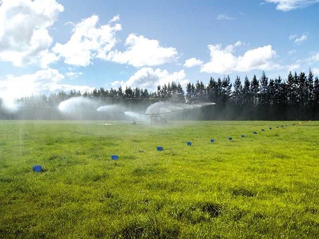 Irrigation-NZ-good-practice.jpg