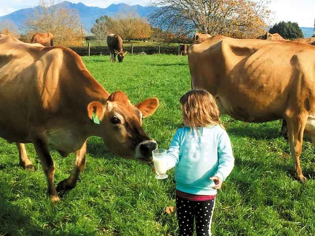 Girl-with-milk-and-cow.jpg