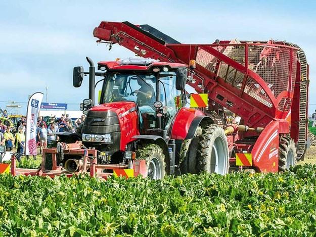 SIAFD-2017-4-Watching-beet-harvesting.jpg