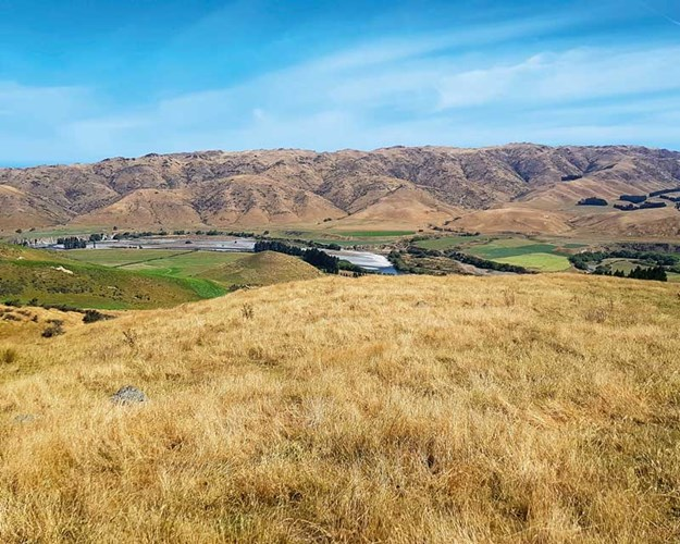North-Canterbury-landscape.jpg