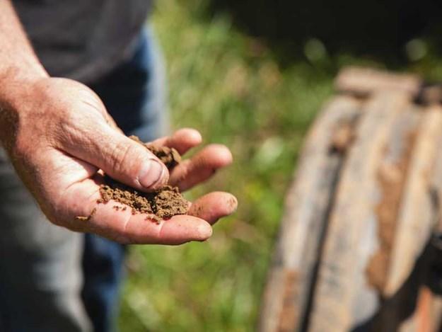 Wintering-soil-practices-NZ.jpg