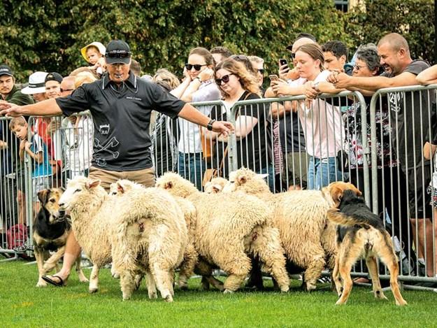 New-sponsor-for-New-Zealand-Rural-Games-2.jpg