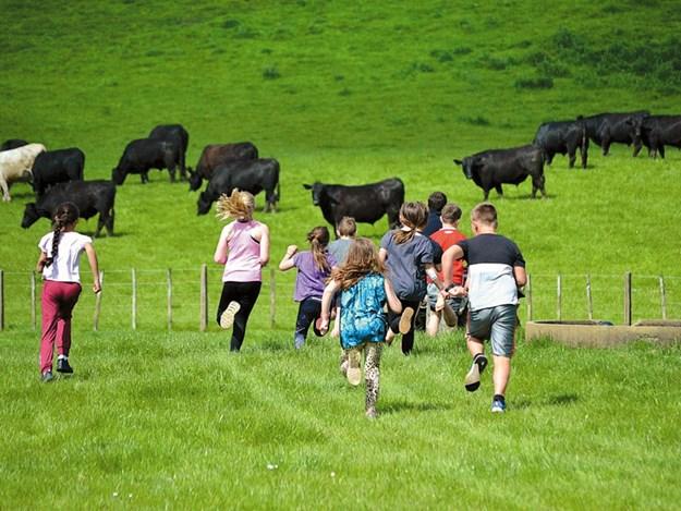 Women-in-ag-Nicky-Berger-open-farms-2.jpg