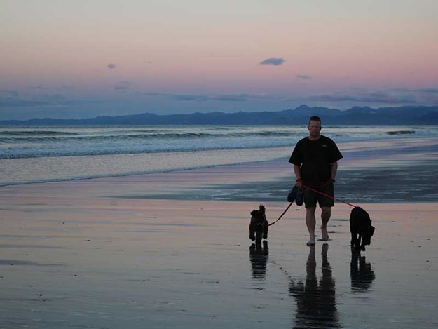 NZMCD-travelling-with-pets-RV-1.jpg