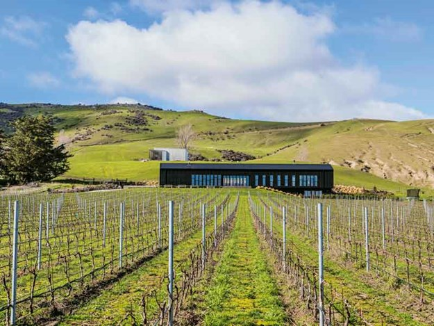 Black-Estate-Winery-in-Waipara---Credit-Stephen-Goodenough.jpg