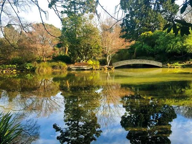 Christchurch-Botanic-Gardens.jpg