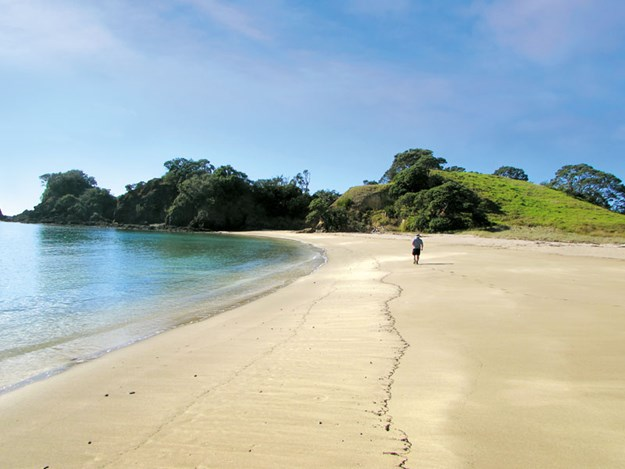 Whelan_11-Beautiful-beaches-at-Whananaki-North.jpg