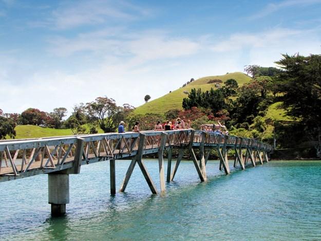 Whelan_5-Pataua-footbridge.jpg