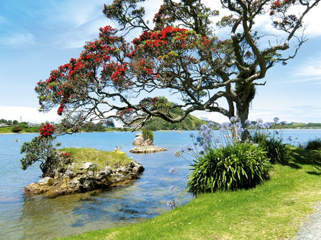 Whelan_9-The-estuary-at-Pataua-North.jpg
